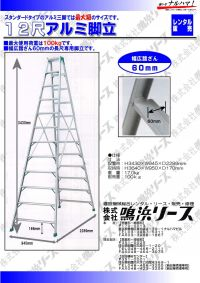 12_scale_aluminum_stepladder
